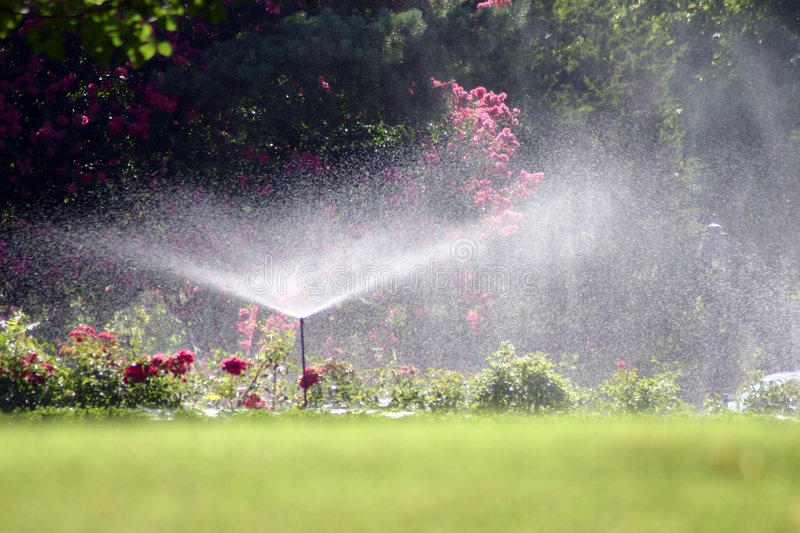 Summer Shower. A photograph of a water sprinkler showering flowers during a hot summer July day in Oklahoma City royalty free stock photography