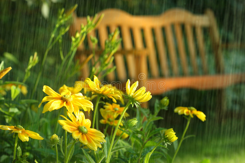 Summer showers stock photography