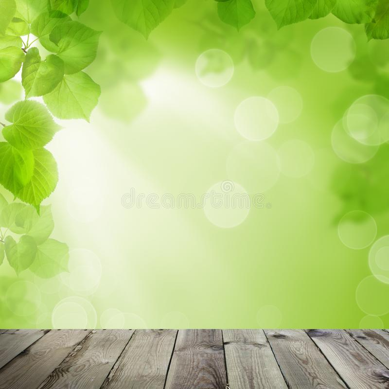 Summer Soft Focus Background with Abstract Green and Yellow Bokeh and Empty Wooden Board with Copy space stock image