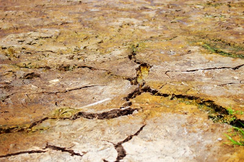 Summer Soil. Brown Dry and Cracked Soil Background at Low Angel royalty free stock images