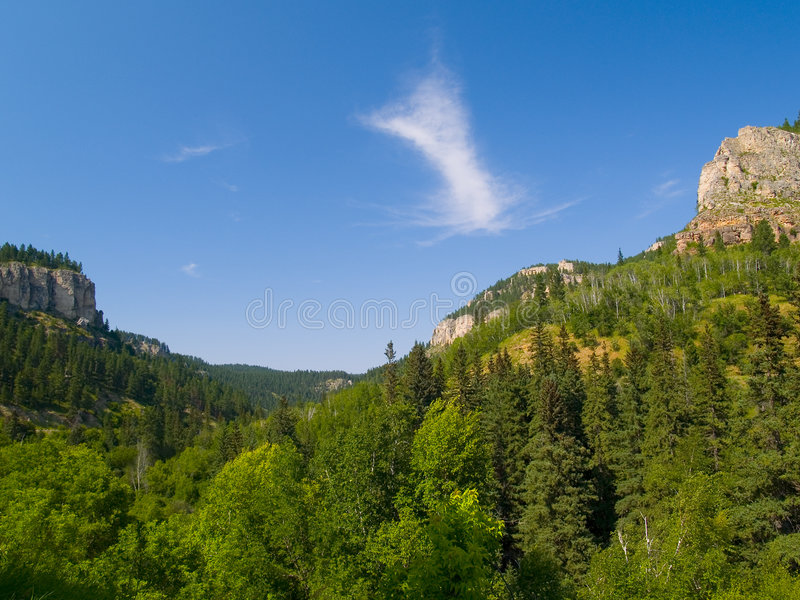 Summer in Spearfish Canyon stock image