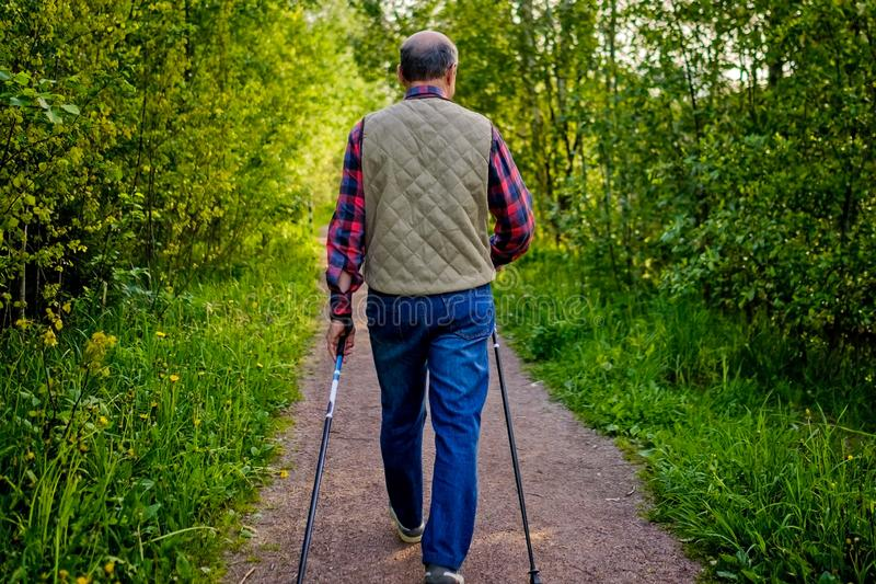 Summer sport for senior people. Nordic walking stock photos