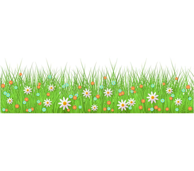 Summer, spring floral lush green grass and lawn seamless border on isolated background in realistic style. stock illustration