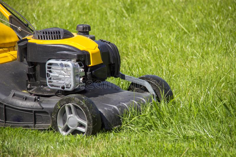 Summer and spring season sunny lawn mowing in the garden. stock photo