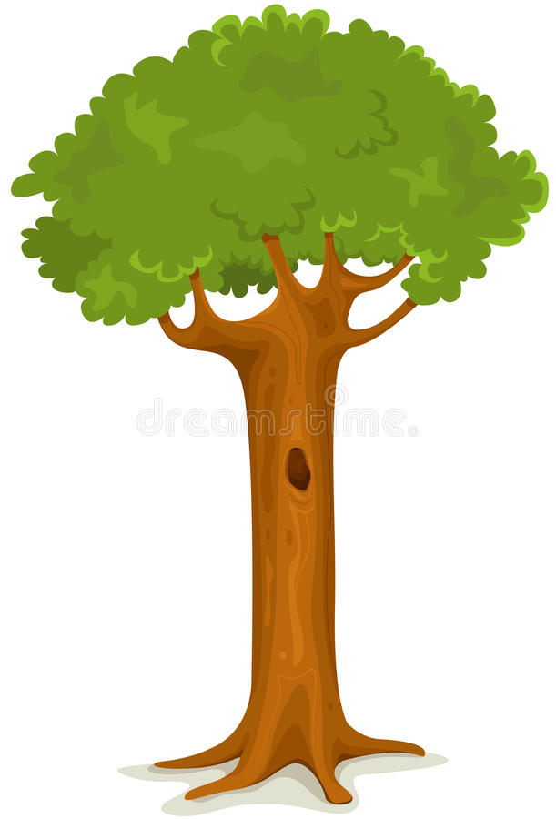 Summer Or Spring Tree stock illustration