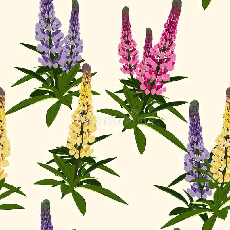 Summer spring wild lupines pink, violet and yellow flowers with green leaves. vector illustration