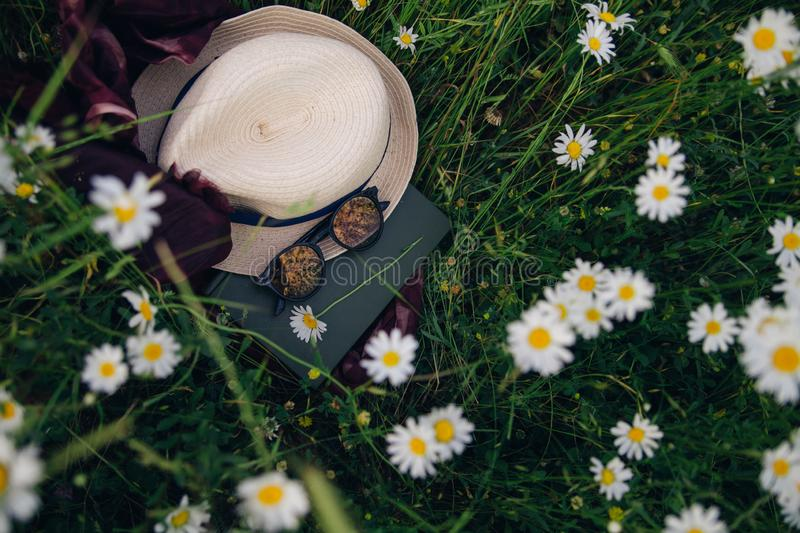 Summer still life among flowers royalty free stock images