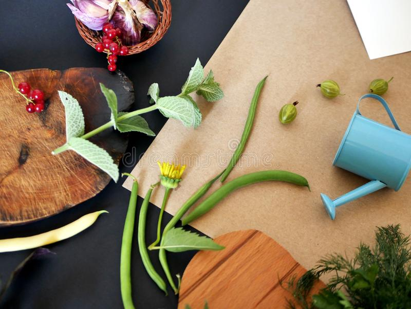 Summer still-life from greenery, vegetables, top view stock photo