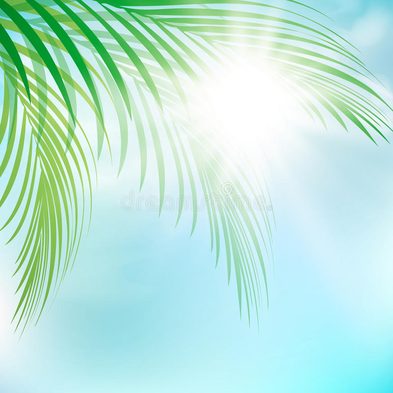 Download Summer stock vector. Image of summer, tropic, tree, leaf - 32317654