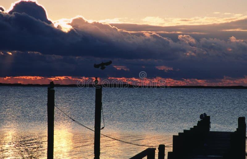 Summer sunrise at Katama Bay stock photo