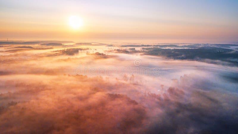 Summer sunrise and morning fog over woodland aerial panorama royalty free stock photo