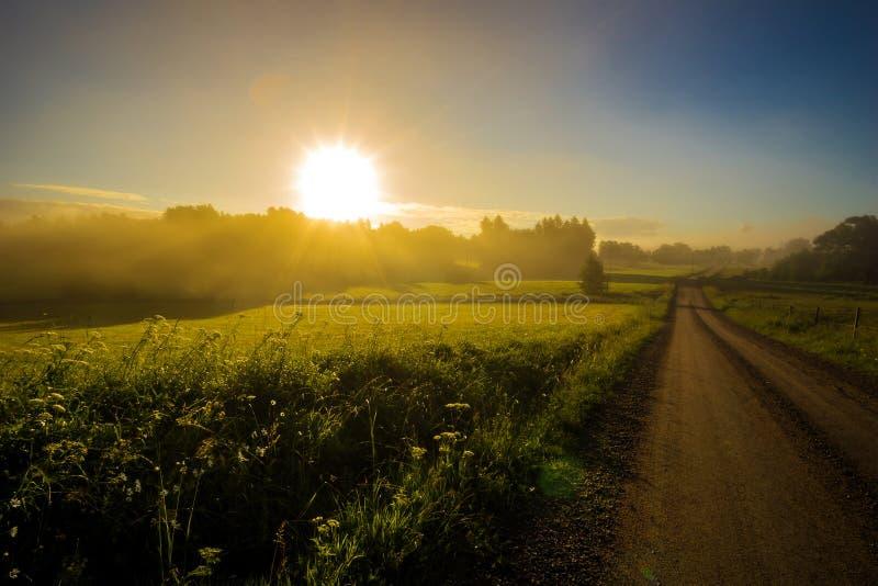 Summer sunrise stock photo