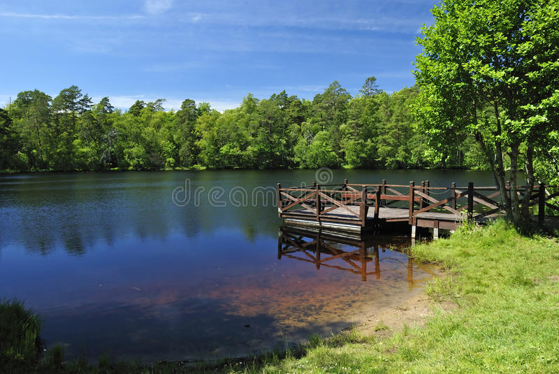 Summer Swedish lake stock image