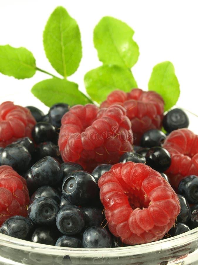 Summer Sweet Fruits Stock Photos
