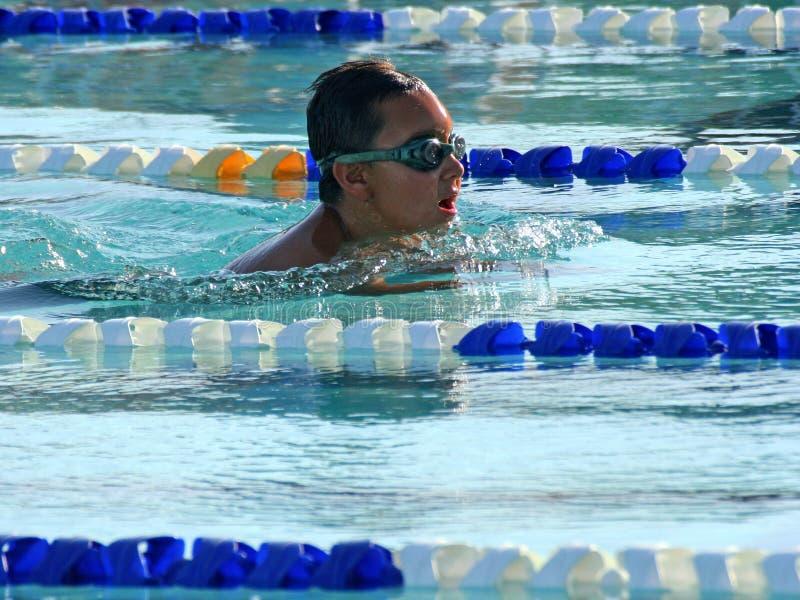 Summer Swim Stock Image