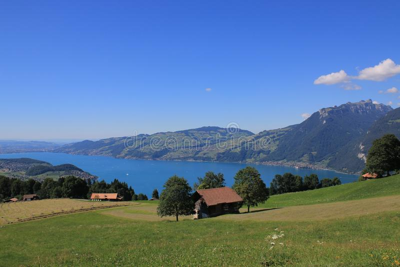 Summer in the Swiss alps. Amazing view on lake and surrounding mountains. Summer in the Switzerland alps. Amazing view on lake Thun and the surrounding mountains stock photos