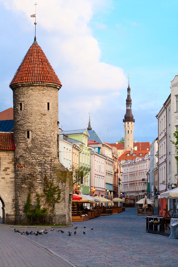 Free Summer Tallinn. Stock Image - 15916151