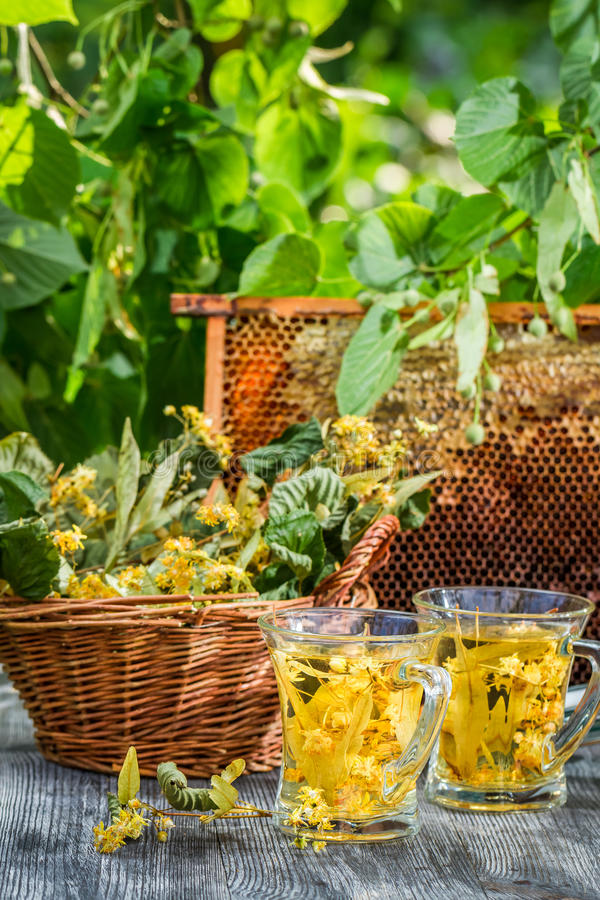 Summer tea made of lime and honey served in the garden stock photography