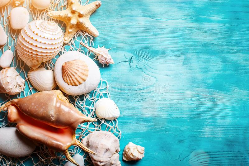 Summer time concept with seashells and starfish on blue wooden boards. Rest on the beach. Background with copy space royalty free stock photo