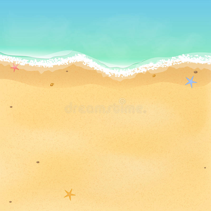 Summer time. Top view of an exotic empty beach with sea stars and seashells. A place for your project. A foamy sea with waves. Vec vector illustration