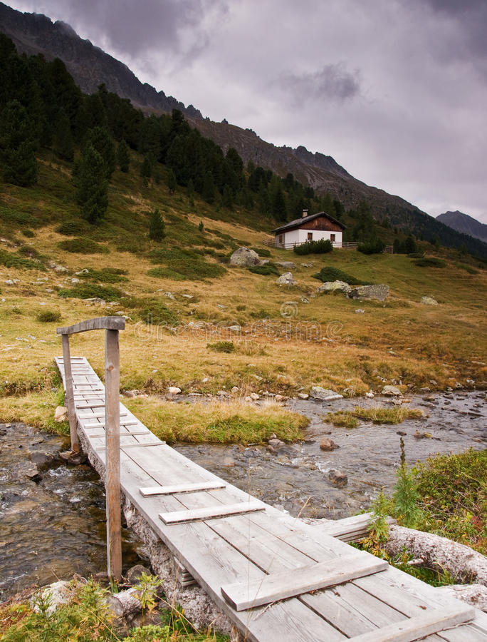 Download Summer in Tirol stock image. Image of italy, tree, grass - 16332421