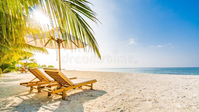 Summer travel destination background. Summer beach scene, sun beds sun umbrella and palm trees. Summer travel destination. Design of summer vacation holiday stock image