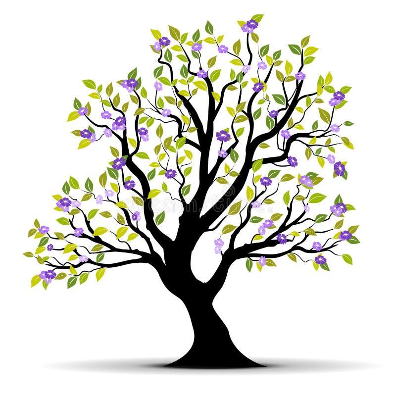 Summer tree illustration vector illustration