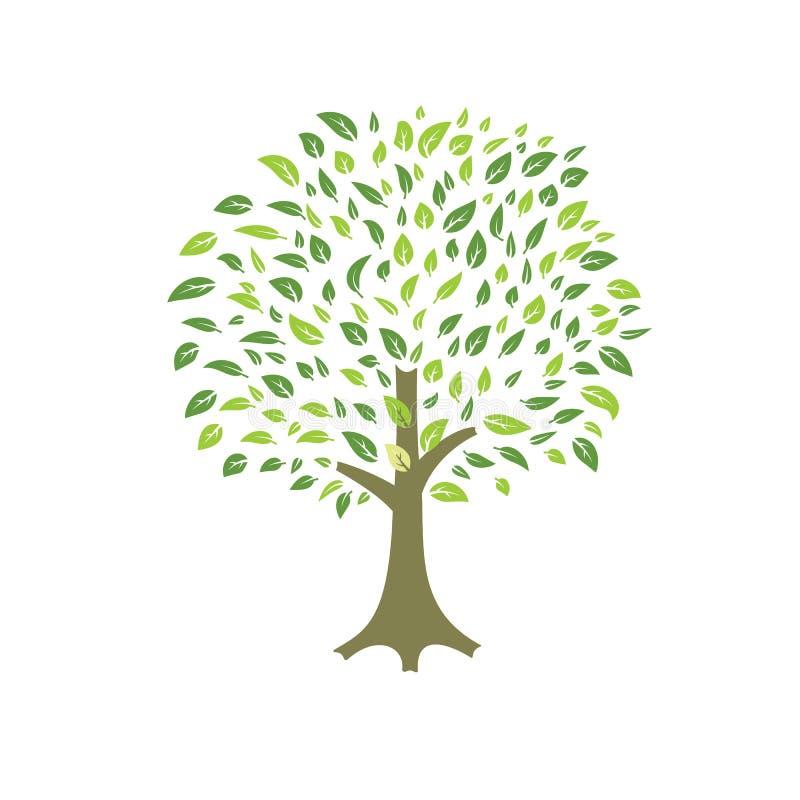 Summer tree vector royalty free illustration