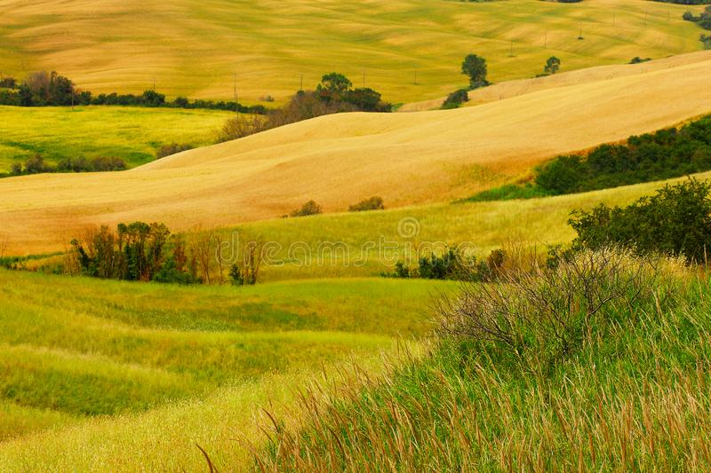 Summer trip to the vineyards and cypress trees. View of the green and yellow hills in Tuscany in Italy stock photo