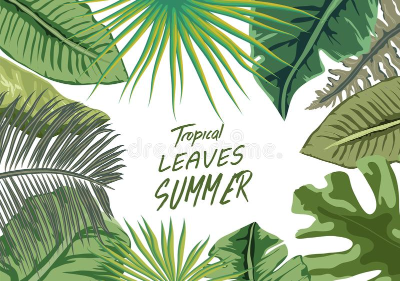 Tropical Summer On Laptop Background Stock Vector Illustration Of Flower Culture 114116707 Choose from 670+ tropical leaf graphic resources and download in the form of png, eps, ai or psd. dreamstime com