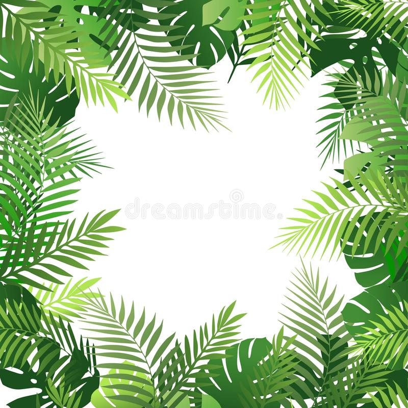 Download Summer Tropical Background With Palm Leaves Exotic Wallpaper Card Poster Placard
