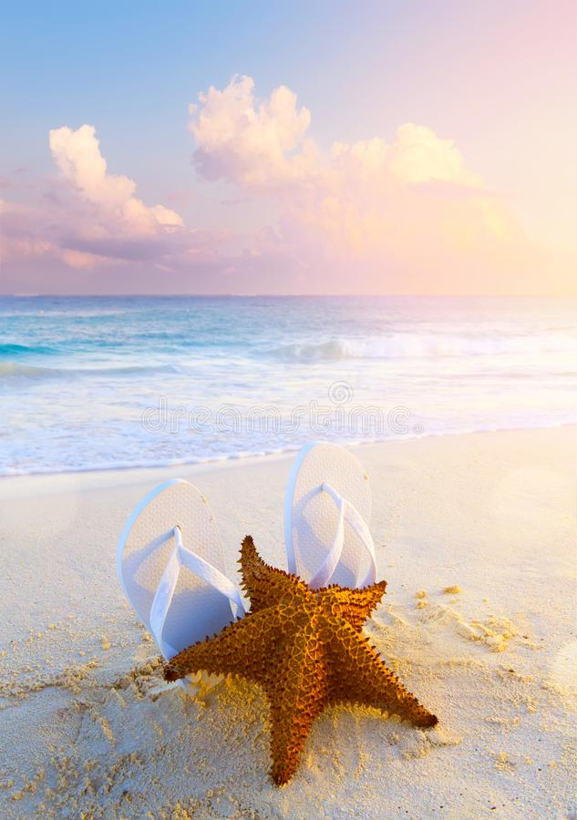 Summer tropical beach background; starfish, sand and water edge stock images