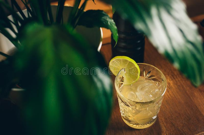 Summer Tropical Cocktail - Mai Tai Cocktail. Summer Beach Cocktail Concept. Tropical Leaves on Background royalty free stock photography
