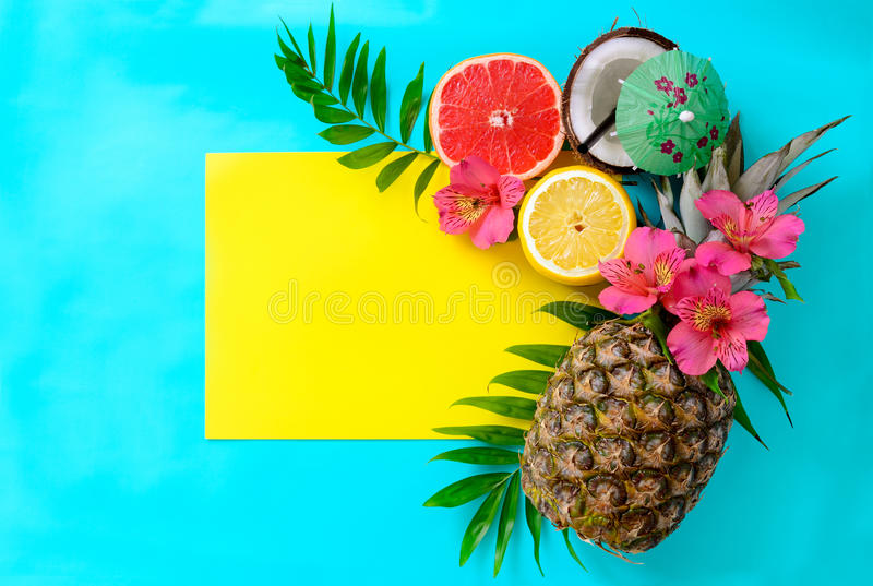 Summer tropical fruits stock photography