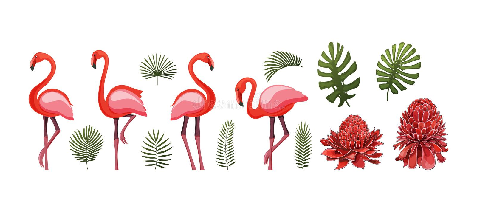 Summer tropical graphic elements with flamingo bird. Isolated stock vectors. royalty free illustration