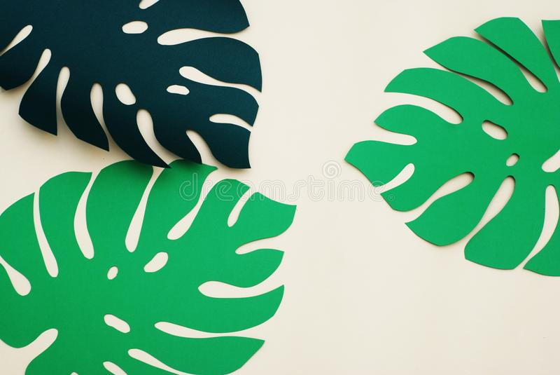Summer Tropical leaves, plants Frame. Paper cut style. Exotic summertime. Space for text. Beautiful dark green jungle floral backg. Round. Monstera stock photography