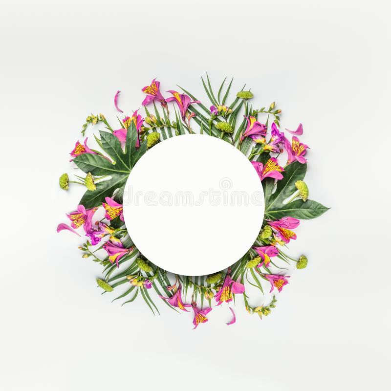 Summer tropical round flowers composition frame with palm leaves on white. Background stock photography