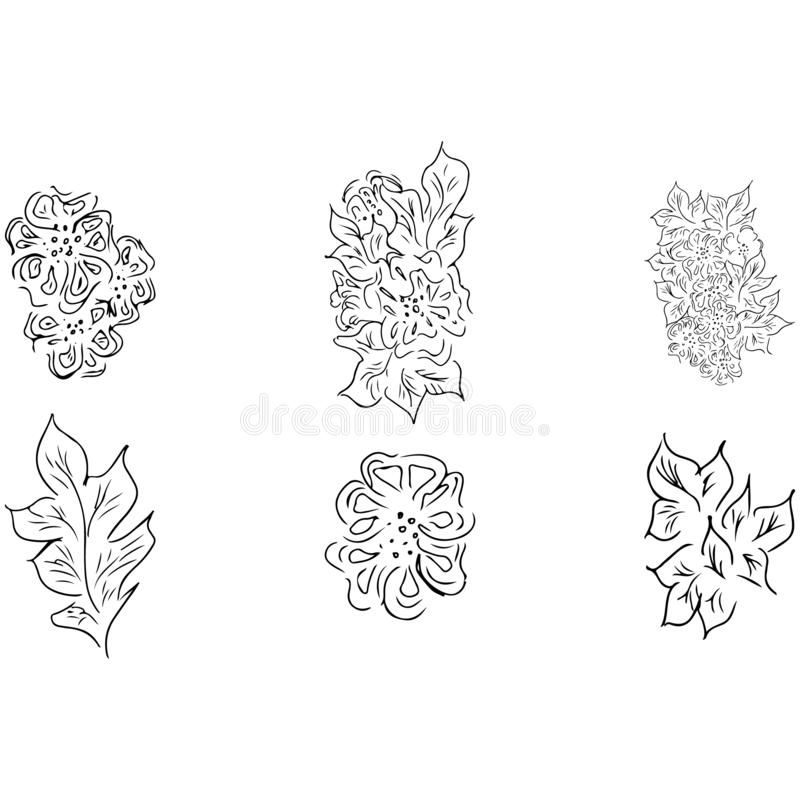Summer tropical set of leaves. Floral botanical flower collection. Hand drawn vector set. Contour sketch. Tropical leaf palm icon. Hawaiian vector illustration royalty free illustration
