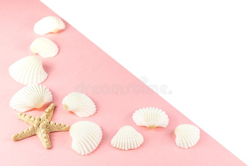 Summer tropical vacation background. Starfish surrounded by white seashells on a pink background. Copy space, top view. stock photos