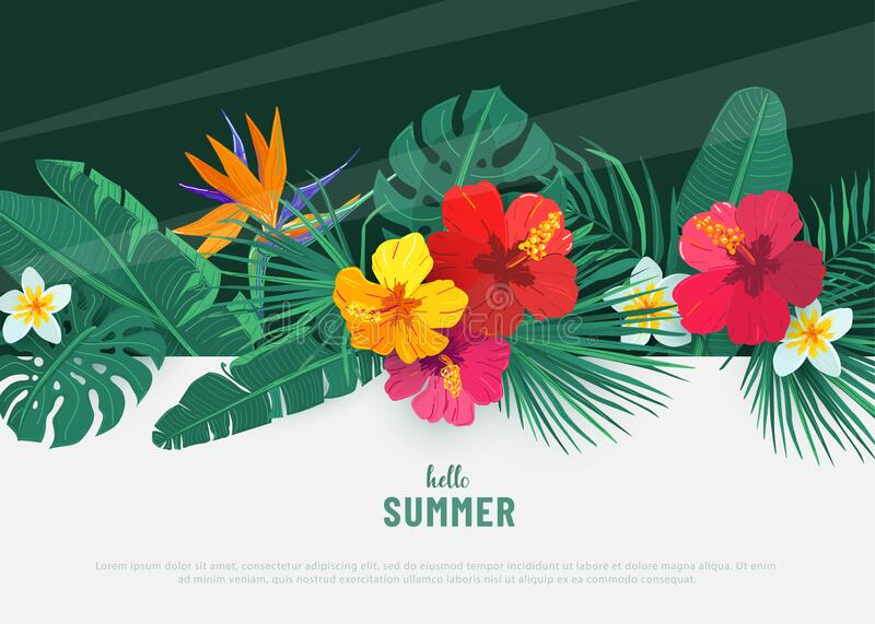 Summer tropical vector background. Flat lay geometric tropic design with exotic hibiscus flower and palm leaves. Spring stock photo