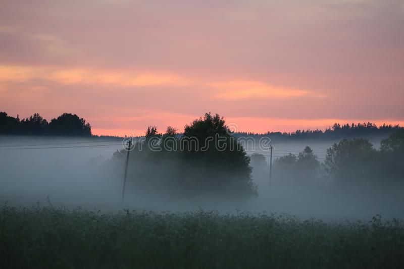 Summer twilight. Sunset sky and low fog over the meadow stock photos