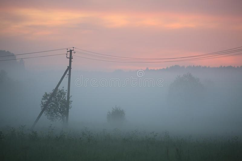 Summer twilight. Young trees and power line against the backdrop of the sunset sky and fog stock images
