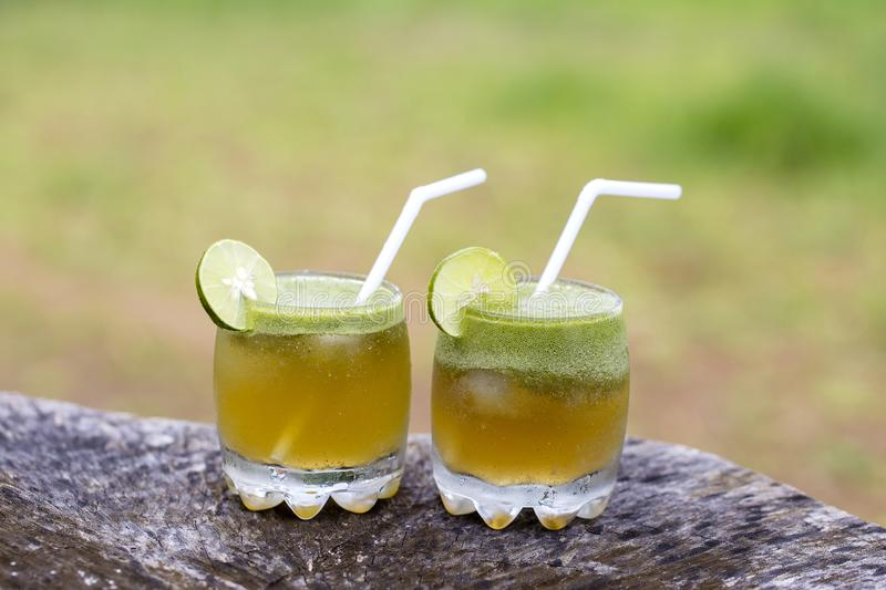 Summer two cocktails with green tea and lime in Bali, Indonesia. stock image