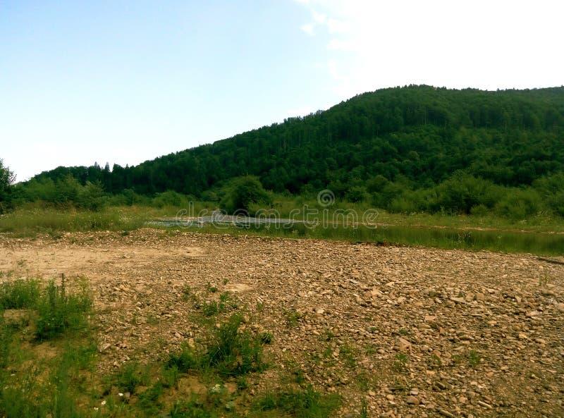 Summer Ukrainian Carpathians royalty free stock photo