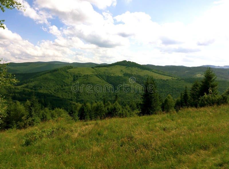 Summer Ukrainian Carpathians royalty free stock photography