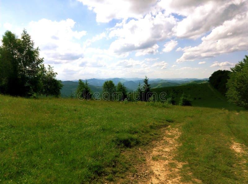 Summer Ukrainian Carpathians stock photos