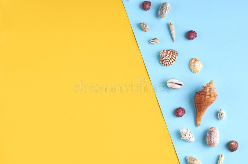 Summer vacation composition idea, seashells on blue and yellow background. Flat lay and top view photo, beach, travel, holiday, summertime, relax, tourism royalty free stock photos