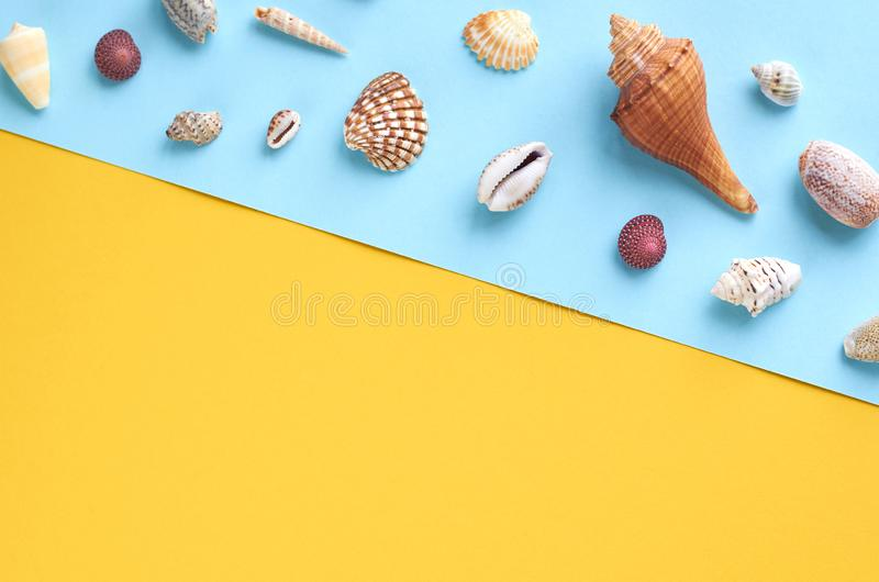 Summer vacation composition idea, seashells on blue and yellow background. Flat lay and top view photo, beach, travel, holiday, summertime, relax, tourism stock image