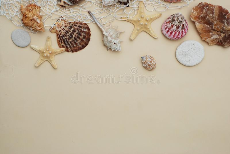 Summer and Vacation concept. Mix of Shells and Stones over Ivory Background with Copy space for Text. Top View. stock photos