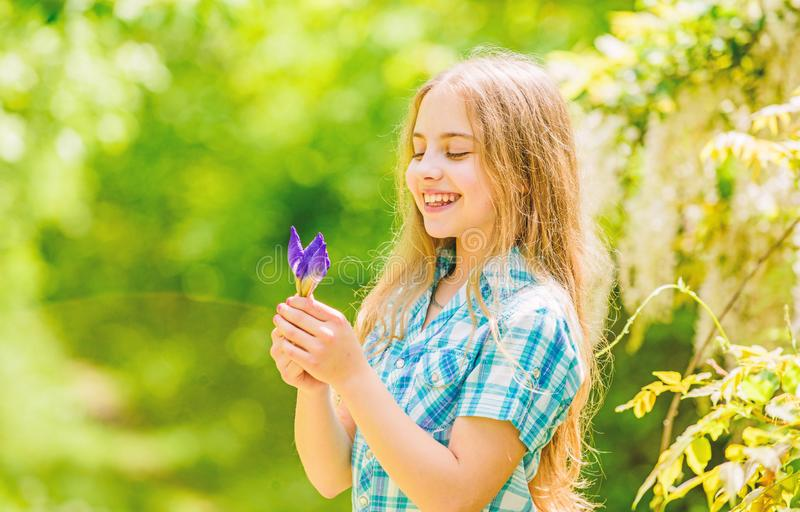 Summer vacation. Green environment. happy child hold iris flower. little girl and iris flower. Natural beauty. Childhood royalty free stock photo
